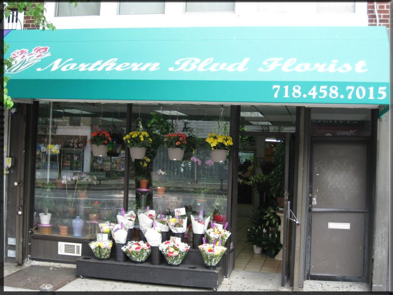 northern-blvd-florist-ny